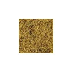Wild Grass Foliage Beige 24x15