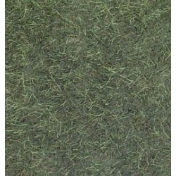 Wild Grass Foliage Dark Green