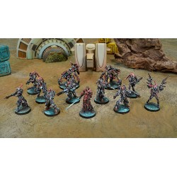 COMBINED ARMY ONYX CONTACT 300PTS PACK