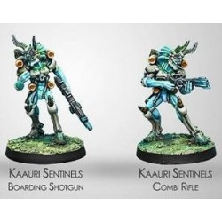 KAAURI SNETINELS (COMBI RIFLE/B. SHOTGUN)