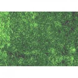Model Hedges Dark Green