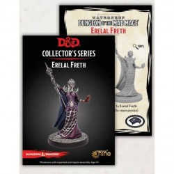 Dungeon of the Mad Mage Ereial Freth (1 Fig)