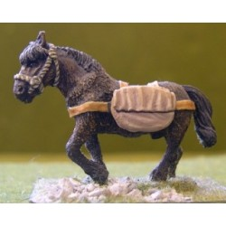 Pack Pony with Kite Shield (1)