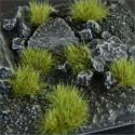 Dry Green 6mm (Small Shape)