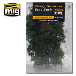Arbusto Fino - Principio de verano