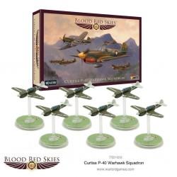 Curtiss P-40 Warhawk Squadron
