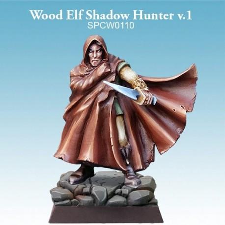Wood Elf Shadow Hunter v.2