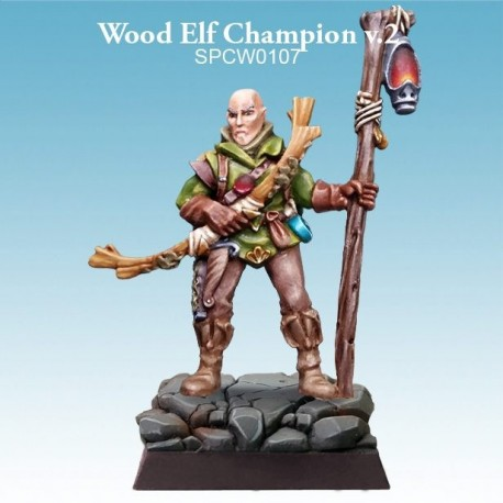 Wood Elf Shadow Hunter v.1
