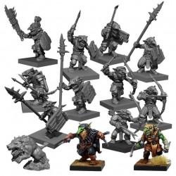 Ogre Warband Set