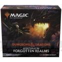 Forgottem Realms - Bundle
