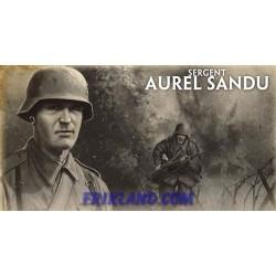 Wojtek the Soldier Bear, Cassino Infantry Aces