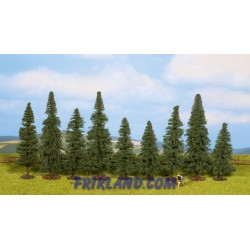 Abetos (9) 8 -12 cm/Fir Trees (9) approx. 8 -12 cm high