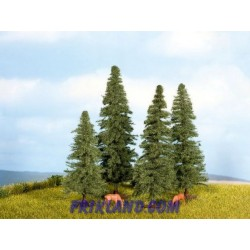 Abetos (4) 80-120mm/Fir Trees (4) 8-12 cm high